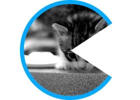Effet de survol en camembert en CSS3