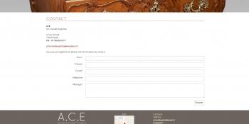 ACE expertise - écran n°4